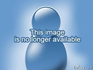 Image of aurelia36 1